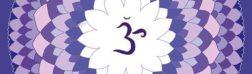 Седьмая чакра Сахасрара